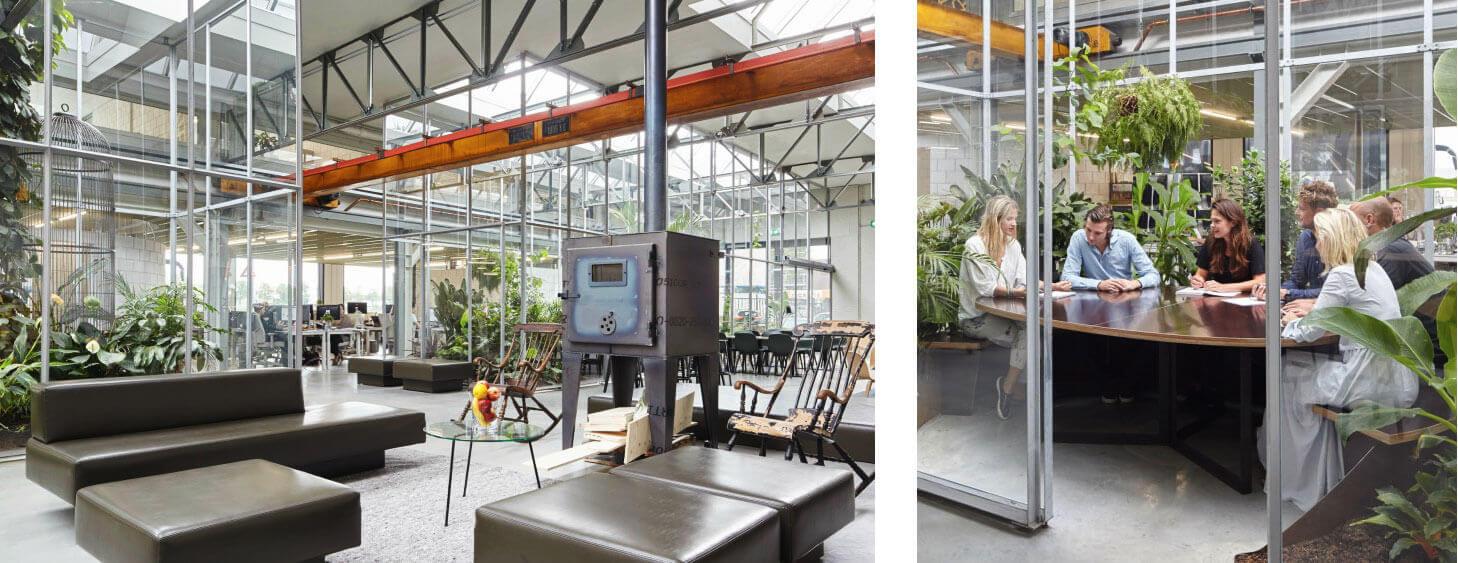 Biophilic interieurontwerp om de natuur het kantoor in te brengen